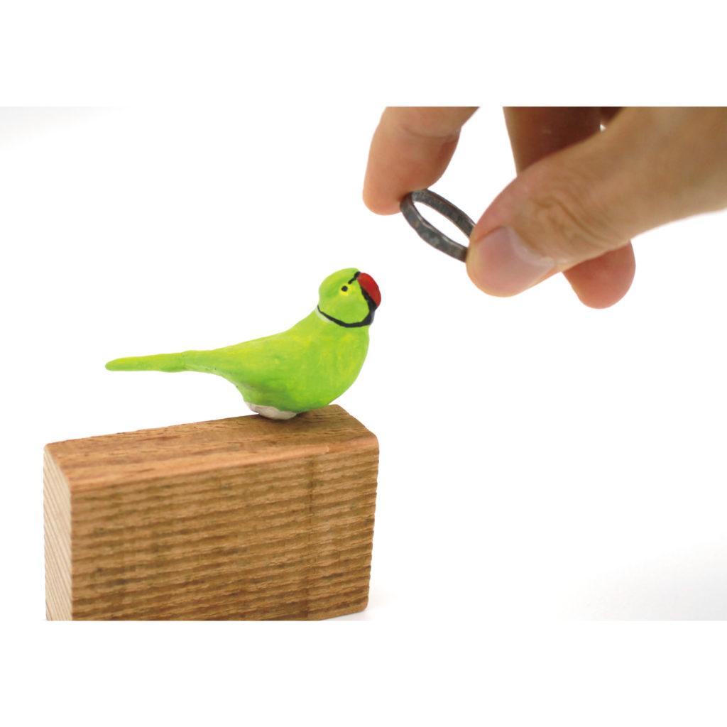 近々発売します、『ワカケホンセイインコの指輪かけ』をご紹介します。